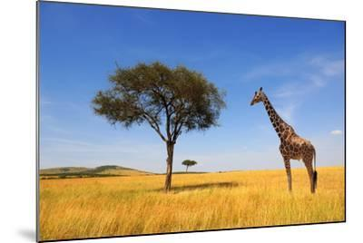 Beautiful Landscape with Tree and Giraffe in Africa-Volodymyr Burdiak-Mounted Photographic Print