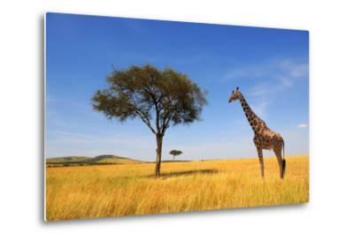 Beautiful Landscape with Tree and Giraffe in Africa-Volodymyr Burdiak-Metal Print