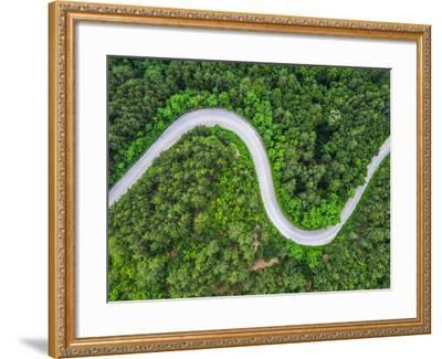 Aerial View over Mountain Road Going through Forest Landscape-Valentin Valkov-Framed Photographic Print