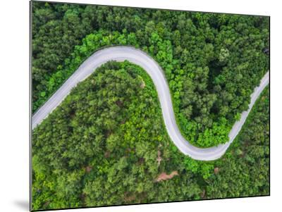 Aerial View over Mountain Road Going through Forest Landscape-Valentin Valkov-Mounted Photographic Print