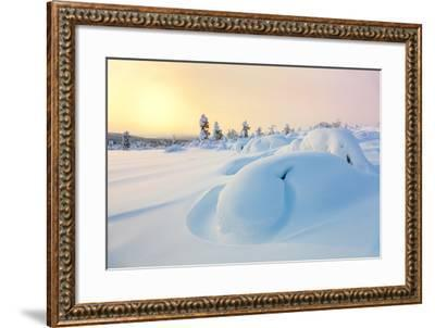 Beautiful Northern Winter Landscape - Sunset, Snow Covered Pine Trees and Big Snowbanks-Taiga-Framed Photographic Print