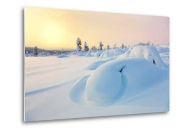 Beautiful Northern Winter Landscape - Sunset, Snow Covered Pine Trees and Big Snowbanks-Taiga-Metal Print