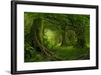Tropical Jungle in Southeast Asia-Quick Shot-Framed Photographic Print
