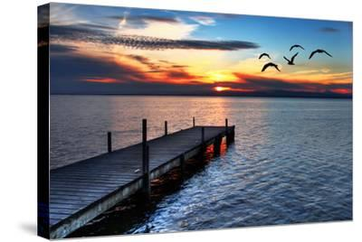 Gulls Fly over the Sea-kesipun-Stretched Canvas Print