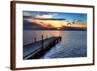 Gulls Fly over the Sea-kesipun-Framed Photographic Print