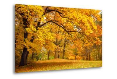 Collection of Beautiful Colorful Autumn Leaves / Green, Yellow, Orange, Red-Taiga-Metal Print