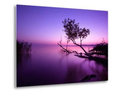Sunset Lake. this Photo Make in Hungary. Sunset Whit Balaton-hofhauser-Metal Print