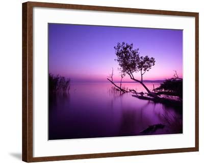 Sunset Lake. this Photo Make in Hungary. Sunset Whit Balaton-hofhauser-Framed Photographic Print