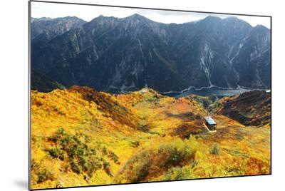Aerial Panorama of a Scenic Cable Car Flying over the Beautiful Autumn Valley in Tateyama Kurobe Al-CHEN MIN CHUN-Mounted Photographic Print