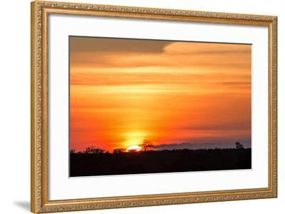 Gorgeous African Sunset in Kruger National Park-Stephen Lew-Framed Photographic Print