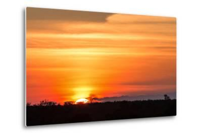 Gorgeous African Sunset in Kruger National Park-Stephen Lew-Metal Print