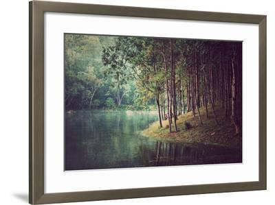 Forest Background ,Vintage Style- Nonnakrit-Framed Photographic Print