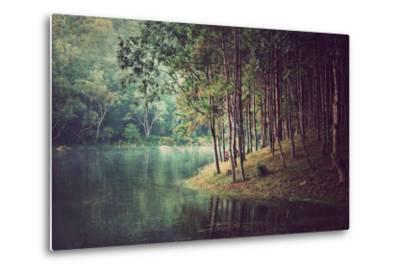 Forest Background ,Vintage Style- Nonnakrit-Metal Print
