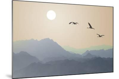 Migrating Cranes to the Sun over the Mountains-Protasov AN-Mounted Photographic Print