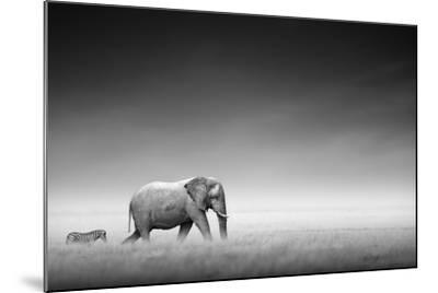 Elephant with Zebra behind on Open Plains of Etosha (Artistic Processing)-Johan Swanepoel-Mounted Photographic Print
