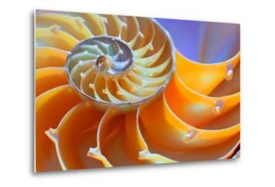 Close-Up of a Nautilus Shell Section- aabeele-Metal Print