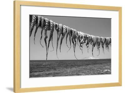 Drying Octopus Arms on Nisyros Island, Traditional Greek Seafood Prepared on a Grill, Greece-Jiri Vavricka-Framed Photographic Print