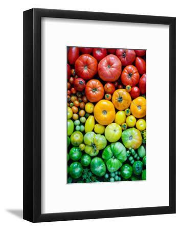 Fresh Heirloom Tomatoes Background, Organic Produce at a Farmer's Market. Tomatoes Rainbow.-Letterberry-Framed Photographic Print
