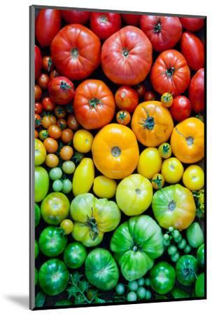 Fresh Heirloom Tomatoes Background, Organic Produce at a Farmer's Market. Tomatoes Rainbow.-Letterberry-Mounted Photographic Print