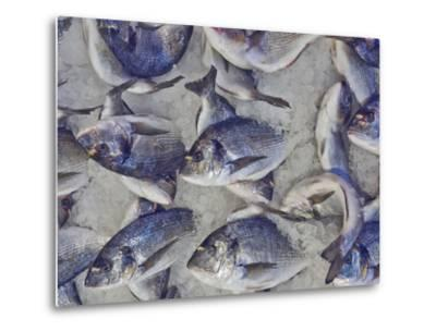 Silver Sea Bream for Sale at the Central Market- Dimitrios-Metal Print