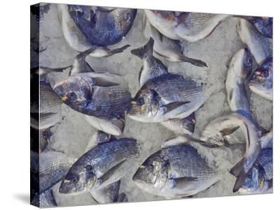 Silver Sea Bream for Sale at the Central Market- Dimitrios-Stretched Canvas Print