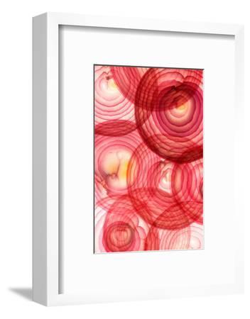 Red Onion Segments-Ryan Matthew Smith-Framed Photographic Print