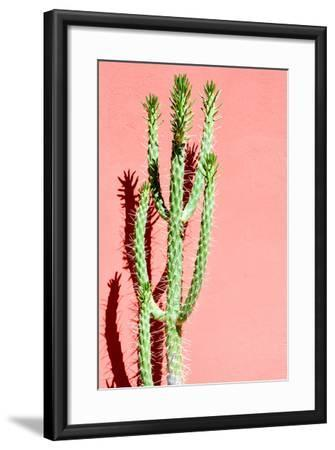 Photo Picture of a Tropical Cactus Texture Background-underworld-Framed Photographic Print
