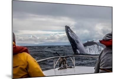 Whale Jump-Alexey Mhoyan-Mounted Photographic Print