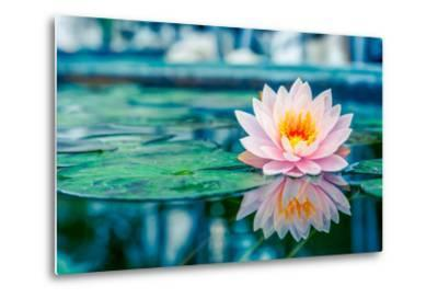 Beautiful Pink Lotus, Water Plant with Reflection in a Pond-Vasin Lee-Metal Print