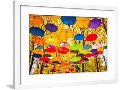 Autumn Umbrellas in the Sky-Oleksii Pyltsyn-Framed Photographic Print