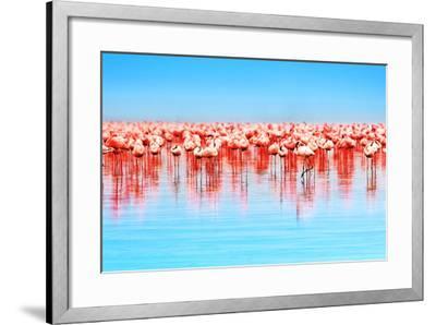 Flamingo Birds in the Lake Nakuru, African Safari, Kenya-Anna Om-Framed Photographic Print