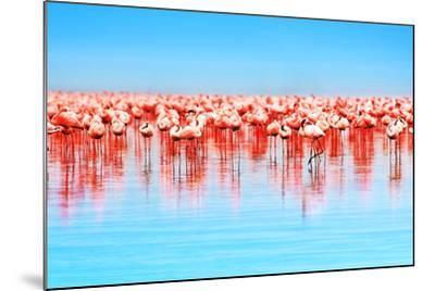 Flamingo Birds in the Lake Nakuru, African Safari, Kenya-Anna Om-Mounted Photographic Print