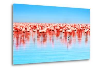 Flamingo Birds in the Lake Nakuru, African Safari, Kenya-Anna Om-Metal Print