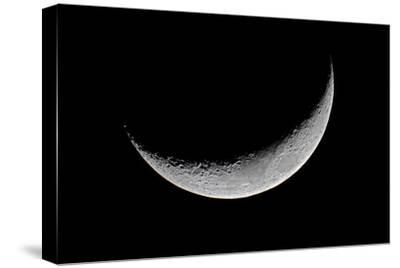 Carolina Moon-Edd Lange-Stretched Canvas Print