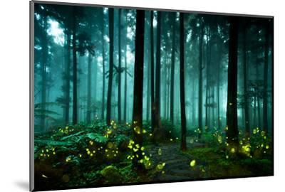 Firefly-htu-Mounted Photographic Print