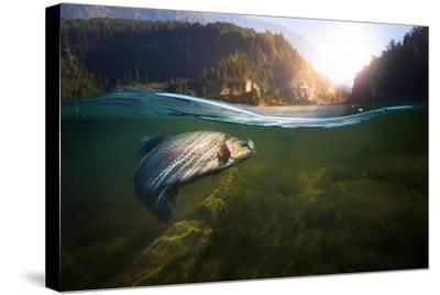 Fishing. Close-Up Shut of a Fish Hook under Water- Rocksweeper-Stretched Canvas Print