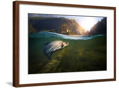 Fishing. Close-Up Shut of a Fish Hook under Water- Rocksweeper-Framed Photographic Print