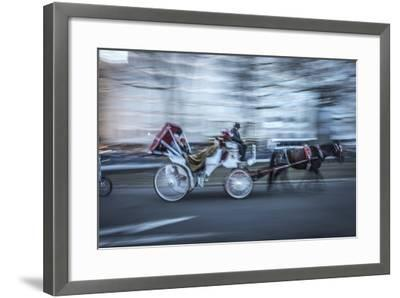 Motion Horse 3-Moises Levy-Framed Photographic Print