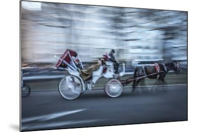 Motion Horse 3-Moises Levy-Mounted Photographic Print