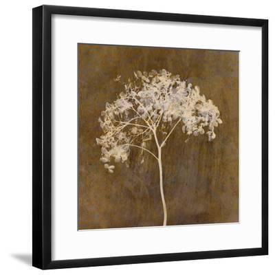 Hortensia Silhouette Bronze-Cora Niele-Framed Photographic Print