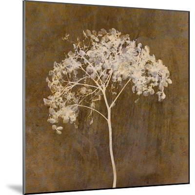 Hortensia Silhouette Bronze-Cora Niele-Mounted Photographic Print