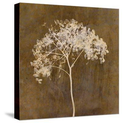Hortensia Silhouette Bronze-Cora Niele-Stretched Canvas Print