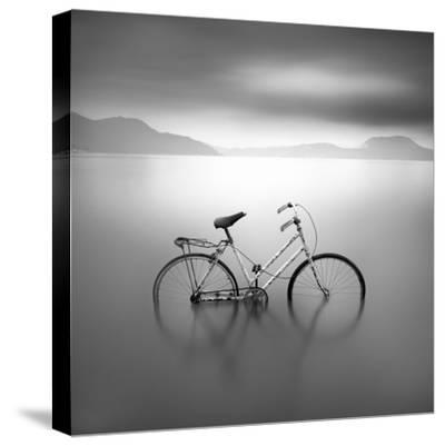 Bicycle 1B-Moises Levy-Stretched Canvas Print
