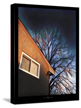 Late In The Day-Tim Nyberg-Stretched Canvas Print