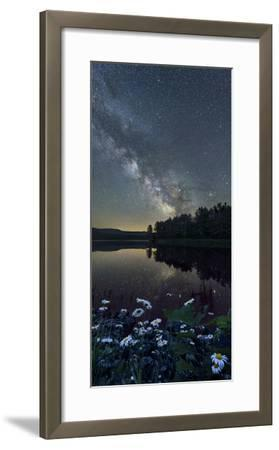 Daisies on Shore-Michael Blanchette Photography-Framed Photographic Print