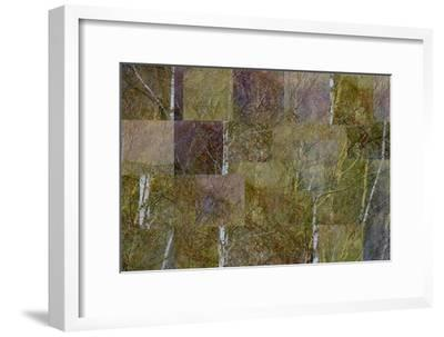 Transitions In Gold-Doug Chinnery-Framed Photographic Print