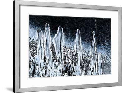 Stargazers-Ursula Abresch-Framed Photographic Print