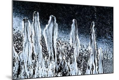 Stargazers-Ursula Abresch-Mounted Photographic Print