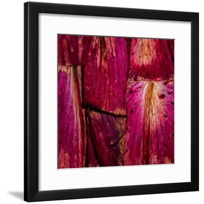 Looking Through The Rubicon-Doug Chinnery-Framed Photographic Print