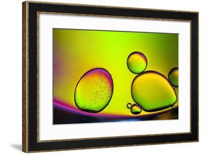 Are You Contagious-Heidi Westum-Framed Photographic Print